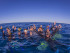 Sunreef Swim with Whales Great Barrier Reef Queensland Australia