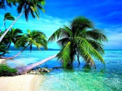 tropical-beach-widescreen-wallpapers-in-hd-free-download-beach-images