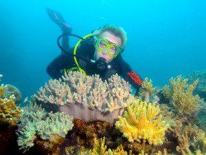 Great Barrier Reef Queensland Australia 7