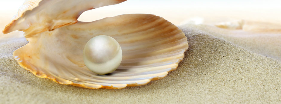 bigstock-Shell-with-a-pearl-255819531